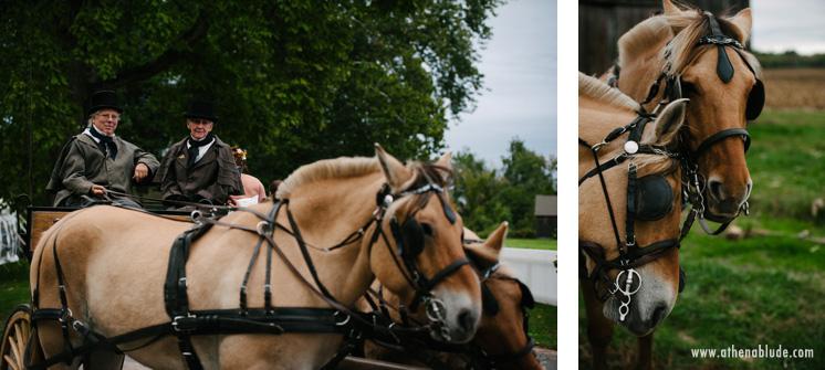 town_farm_wedding_athena_blude_photography_045